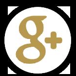 グーグルプラス google+